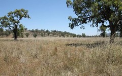 148 Warrah Creek Rd, Willow Tree NSW