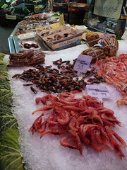Barcelona (runlama) Tags: barcelona fish de la spain percebe market shell fisch espana markt boqueria spanien mercat muschel pollicipes seeigel entenmuschel runlama