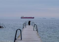 Waiting (LuzAzur) Tags: winter sea people seascape color copenhagen denmark pier ship afternoon streetphotography oresund amager melacholy