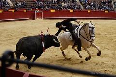 _DSC1191 (Copy) (chris30300) Tags: toros cartagena corrida ventura valence fallas vicens rejon
