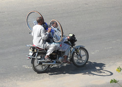 Men Riding Bikes in Egypt (shaire productions) Tags: world life travel people male men bike bicycle river photography photo image candid transport egypt picture guys photograph egyptian transporation nileriver