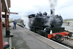 P4160117 (Steve Guess) Tags: uk england usa train kent tank railway loco steam gb locomotive eastsussex 30065 060t