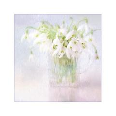 Spring flower (BirgittaSjostedt.) Tags: plant flower art texture garden spring soft paint outdoor unique pastel pot highkey ie snowdrop photoborder magicunicornverybest birgittasjostedt
