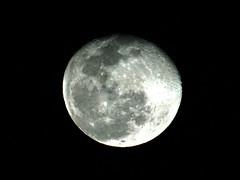 Full moon 24Apr16 (njeejul) Tags: sky moon nature night dark star sony full a6000 astrometrydotnet:status=failed astrometrydotnet:id=nova1526012
