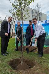 49th Annual Meeting: Tree Planting at Goethe University (Asian Development Bank) Tags: green germany hall university frankfurt lecture deu goethe hesse annualmeeting takehikonakao