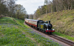 Lindfield Wood Bluebells (Articdriver) Tags: flowers bluebells woodland sussex spring trains steam southern locomotive railways southernrailway billington e4 bluebellrailway b473 wealdenrambler lindfieldwood