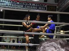 Chiang Mai (Muay Thai Boxing), Thailand (Jan-2016) 10-013 (MistyTree Adventures) Tags: thailand fight referee women asia seasia indoor chiangmai boxing muaythai thaiboxing boxingmatch boxingring panasoniclumix thapaeboxingstadium