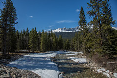 Banff Apr 2015-4 (memories by Mark) Tags: canada alberta banff banffnationalpark bakercreek
