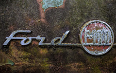 Ford F-100 (Mark Chandler Photography) Tags: auto white color colour classic cars ford car rural truck canon ga vintage emblem georgia photography photo woods junk rust automobile antique stock rusty f100 chevy 7d trucks junkyard hoodornament junkyards oldcarcity whitega markchandler 7dmarkii