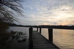 DSC_1307 (Six Sigma Man (Thank you for the 1.8M+ views)) Tags: sunset pond nikon longisland smithtown nikond3200 suffolkcounty blydenburgh blydenburghcountypark blydenburghpark