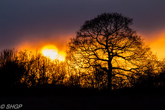 Sunset at Stow Maries (SHGP) Tags: world trees light sunset sky cloud color colour tree nature night clouds canon eos one 1 photo war flickr outdoor events sigma nightshoot timeline ww1 maries essex tle charter stow aerodrome chelmsford 18200mm 700d