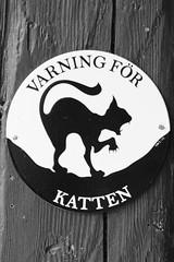 katten (Horace T) Tags: art sign cat canon chat badge panneau ef100mm eos60d