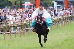 Traditional racing (Teruhide Tomori) Tags: horse sports festival japan kyoto event   horseracing tradition japon  kamigamoshrine