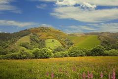 Paisaje de Otxondo (Margarita Calder) Tags: primavera paisaje colores campo prados