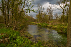 River Test (explored 29/04/2016 Thankyou) (Peter Tappern) Tags: trees england sky test clouds river reeds dam south logs hampshire nettles shallow towpath