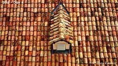 Rooftop in Dubrovnik, Croatia (simon ruszala) Tags: roof orange rooftop europe terracotta tiles dubrovnik croaria