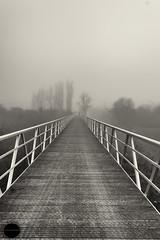 El puente en la presa (Javier Colmenero) Tags: bridge blancoynegro fog blackwhite pantano swamp alava niebla euskadi araba nikkor1855mm nikond3100