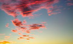Coucher de soleil (Lil d'un Naturaliste) Tags: algeria algrie  aflou laghouat