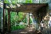 (wolfartf) Tags: park parque brazil verde green abandoned sol nature paraná construction paint day natureza saturday sunny curitiba sábado abandonado tanguá construção