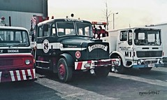 Two and a half patients waiting attention. (pyewacket947) Tags: cab transport dodge contractor hercules recovery berryhill ergo scammell kseries droitwichspa watfordgapservices aecleyland rogerdyson