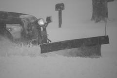 Winter Storm Jonas:  January 23 - 2016 (George - with over 2 mil views - THANKS) Tags: winter usa snow monochrome us blackwhite newjersey unitedstatesofamerica snowstorm january blizzard naturalworld mercercounty ewing winterscene acdseepro photogeorge nikond750 january2016 winterstormjonas january232016