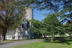 Château-Renault (Indre-et-Loire) (sybarite48) Tags: france castle dungeon castelo keep schloss castello 城 castillo kasteel برج zamek bergfried 城堡 замок indreetloire torrione donjon châteaufort mazmorra قلعة châteaurenault ένακάστρο birkale محصن 城堡主塔 μπουντρούμι οχυράκρύπτηπύργου