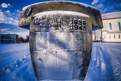 Iisalmi (Tuomo Lindfors) Tags: winter snow suomi finland memorial fisheye lumi talvi adjust iisalmi muistomerkki kirkkopuisto topazlabs club16 vaikeidenaikojenmuistomerkki