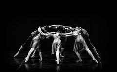 PAVILHO D (Marcos Simanovic) Tags: brazil blackandwhite bw black brasil dance arte dancing sopaulo jazz dancer dana famosos monocromtico expresso danando danar contempornea danacontempornea simanovic pavilhod