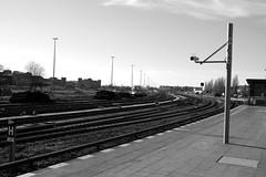 Germany - Berlin - Tempelhof Station (st3000) Tags: blackandwhite bw berlin station train germany europe outdoor tracks railway trainstation 1855mm sbahn xpro1