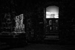 N°201600026 (Thierry Lubin (www.meinstream-fotografie.de )) Tags: schnee winter fotografie ruine schwarzwald thierry kloster lubin 3570mm badenwürttemberg blackforrest klosterruine frauenalb bwblackwhiteblackandwhite nordschwarzwald thierrylubin meinstream meinstreamfotografie swschwarzweissschwarzundweiss