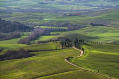 Val d'Orcia (gianmarco giudici) Tags: landscape nikon valdorcia nikond600 gianmarcogiudici