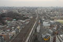 Tokyo Train Story  2016 (Tokutomi Masaki) Tags: japan train tokyo   shinkansen 2016