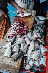 butchering (Premshree Pillai) Tags: india kerala calicut kozhikode indiajan16