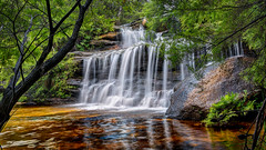 Waterfall / Wentworth Falls (Young Ko) Tags: longexposure nature yellow landscape interesting nikon rocks colorful flickr bluemountains waterfalls harmony nsw garie wentworthfalls nationalpass