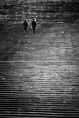Roma - 2010 (Enzo D.) Tags: people blackandwhite italy rome roma scale stairs blackwhite italia steps it stairway eur biancoenero lazio 2010 scalinata palazzodellaciviltdellavoro colosseomoderno wwwenzodemartinocom