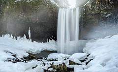 Tamanawas Falls in Winter( Mt Hood NF, OR) (Sveta Imnadze) Tags: snow ice nature landscape or waterfalls mthoodnf tamanawasfalls