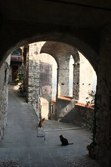 Vezzano Ligure (La Spezia) (alkutraes) Tags: light shadow italy cats ancient arch village liguria ombra pietra antico gatti luce openair laspezia paese gattonero gattorosso vezzanoligure alkutraes