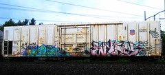 sour - wyse (timetomakethepasta) Tags: art train graffiti pacific union sws sour d30 freight reefer wh armn wyse a2m