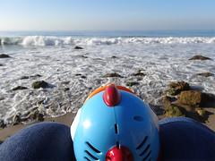 Little Whammy at El Matador State Beach (ensign_beedrill) Tags: ocean pacificocean beaches elmatador elmatadorbeach elmatadorstatebeach littlewhammy malibutrip2016