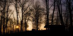 Sonnenaufgang (steffens.jens) Tags: silhouette sunrise ball landscape gold sony 7 gelb planet alpha landschaft sonne bume sonnenaufgang morgen baum mosel frhling calmont frh bremm morgenstimmung a edigereller
