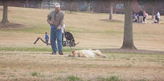 Clever Dog Plays Dead To Stay At The Park Longer (jh.siesta) Tags: park dead plays longer stay clever
