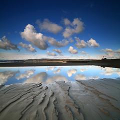Arnside Fluffies (angus clyne) Tags: vertorama lake district morecambe bay sunrise spring day railway estuary rising tide mud flats arnside