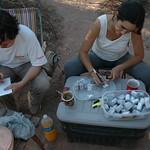 "Registramndo rollos de fotos en campamento de Reserva Aborigen - Chaco 2008 <a style=""margin-left:10px; font-size:0.8em;"" href=""http://www.flickr.com/photos/132693845@N03/25678246595/"" target=""_blank"">@flickr</a>"