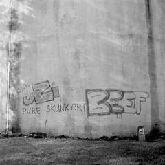 Pure Skunk Art BEEF (tercrossman87) Tags: film home mat 124g push epson hp5 800 development ilford yashica 119 v550 lc29 ilfotec