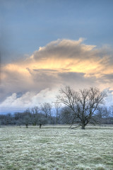 (sgtsalamander) Tags: blue sky cloud storm tree green field nikon nikkor hdr d800 2485