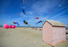 Rencontres Internationales de Cerf-Volant 2016  Berck (JuliusMassi) Tags: voyage road trip travel sea wild sky mer france nature french landscape photography photo nikon focus eau day photographer photographie walk route passion adventures nikkor paysage extrieur holydays cabane vie berck aventure pasdecalais dtente cerfvolants grandangle d3200 1024mm focusnumrique
