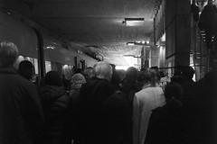 L1015176_v1 (Sigfrid Lundberg) Tags: leica people train fence skne sweden passengers railwaystation malm policeofficers bordercontrol passportcontrol aposummicronm hylliestation aposummicronm50mmasph 50mmf20asph
