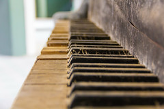 A long-forgotten song  (michael_hamburg69) Tags: old abandoned keys keyboard piano urbanexploration sanatorium derelict brandenburg urbex abandonedplace offthemap flgel klavier tasten lostplace beelitzheilsttten tuberkulose beelitz potsdammittelmark heilsttten beelitzheilstaetten lungenheilsttte lungenheilstttefrmnner 18981930 april2016 go2knowfototour