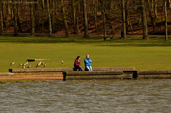 Tervuren.Belgium (Natali Antonovich) Tags: park portrait nature water birds landscape spring couple belgium pair lifestyle talk together tervuren tradition relaxation heandshe enamouredspring