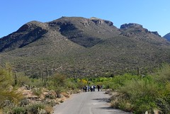 Sunday morning birding group, Sabino Canyon. (troupial) Tags: sabinocanyon pimacounty pimacountyarizona